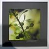 Fotoausstellung En Detail_1